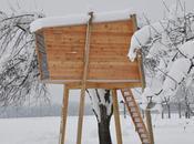 casa sull'albero: ecco come costruirla. FOTO GALLERY
