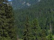 Vacanze Alto Adige: highlight inserire nella list