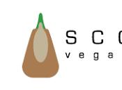 Testati Stiletico: Sevi Scotti Vegan Shoes