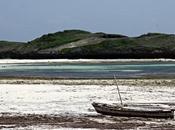 nostro viaggio Kenya attraverso immagini belle: Watamu