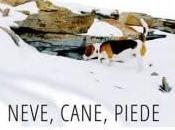 Neve, Cane, Piede.