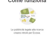 Ecosia: motore ricerca pianta albero ogni click
