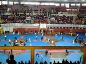 Taekwondo: INSUBRIA 2017