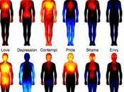 Emozioni Identificate