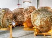 Musei Mare Liguria potete perdere