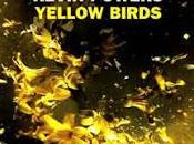 Recensione, YELLOW BIRDS Kevin Powers