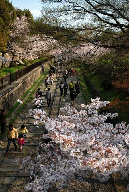 Keage, Kyoto in primavera