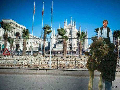 # Palme Piazza Duomo Milano