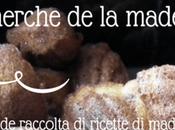 Recherche Madeleine: grande raccolta ricette madeleines