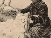 cotone coltivato Salento leccese 1327 reintrodotto Prof. Ferdinando Vallese 1905