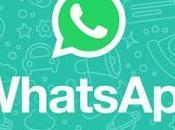 WhatsApp starebbe diventare Open Source: rivoluzione arrivo?
