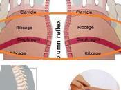 nostri sintomi, nostre vertebre, nostro benessere.(2