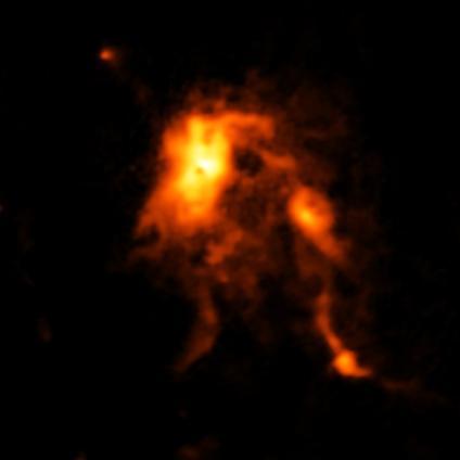 Zampa di gatto: rinfrescata alla nursery stellare
