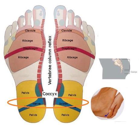 I nostri sintomi, le nostre vertebre, il nostro benessere. (5 di 5)