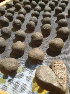 Pasqua in arrivo, niente uova ma bombe verdi: prepara e regala seed bombs!