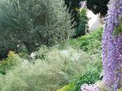giardini Villa della Pergola aperti marzo