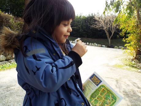 Come vestire i bambini al parco (zoo): un kids outfit con stampe animali