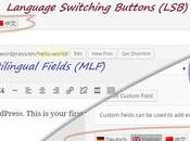 QTranslate plugin multilingua WordPress