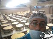 Come Parmigiano Reggiano? Visita azienda