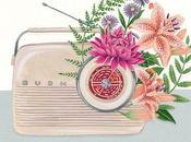 Alla scoperta giardino aromatico: musica sapori