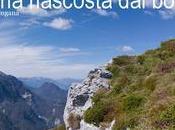 Monte Mezza, ostica cimetta delle quote basse Valsugana.