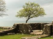 Omisalj, isola Krk, Croazia: un'alternativa Baska Vrbnik