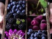 Frutti bosco: super-food super-buoni?