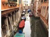 Album: Venezia riflessi veneziani