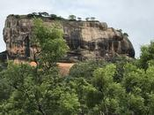 Wild Lanka: pillole viaggio
