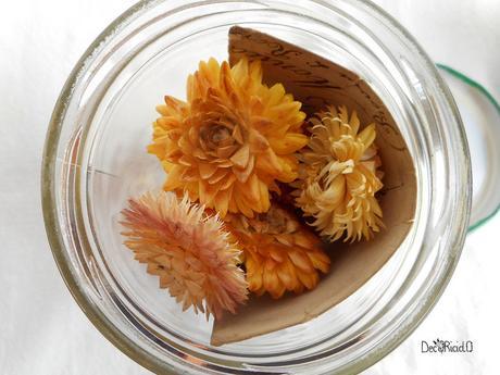 barattoli portafoto floreali 4