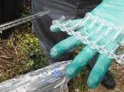 Carabinieri Forestale trovano decine discariche abusive Gargano quali rifiuti ospedalieri