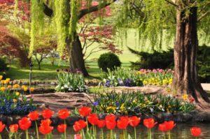 iTop: i 5 giardini più belli da vedere in Italia