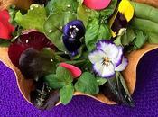 Insalata mista fiori erbe aromatiche