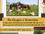 giugno settembre: nuovo centro estivo contatto Natura cavalli provincia Macerata