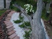 giardino (parte