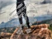 Mangialonga Picena 2017, piatti gourmet, vini tipici natura delle Marche