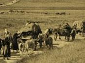 """Genocidio armeno: verità """"scientifica"""""""