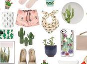 It's cactus time