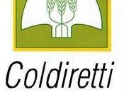 Coldiretti: Voucher, campi lombardi meno dell'1%