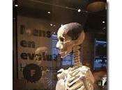 bioingegneri dell'Università Pisa padri dell'Homo Creatus esposto Museon L'Aia