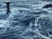 prima linea salvaguardia mari nella Giornata Mondiale degli Oceani
