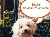 parte nuova petizione diritti degli animali malati