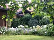 #fioridivenerdì- piccolo bouquet garden rose