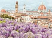 profili Instagram seguire tema l'Italia
