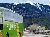 Aziende: Flixbus riscuote sempre successo, ottobre sarà fuorilegge Italia