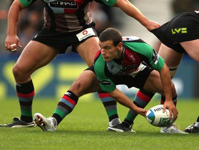 A real Challenge for Harlequins