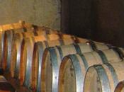 Vino Cabernet Sauvignon, elisir galvanizzante