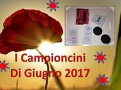 CAMPIONCINI GIUGNO 2017
