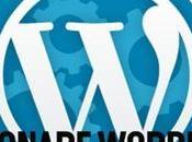 Posizionare Google sito WordPress Categorie