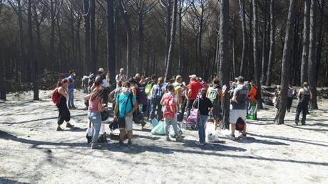 Emergenza Vesuvio, i comitati civici portano acqua e cibo agli animali delle pinete